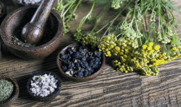 A selection of natural ingredients for making balms and ointments